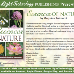 Essences of Nature card