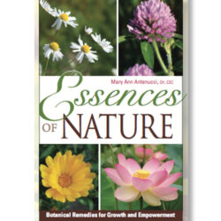 essences of nature book - mary ann antenucci