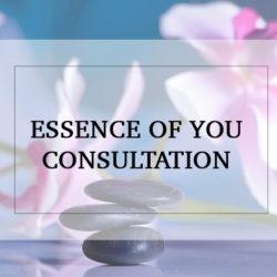 Essence of You Consultation